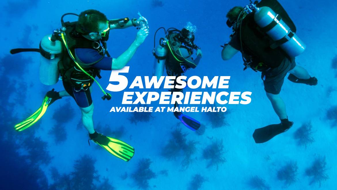 5 Awesome Experiences Available At Mangel Halto